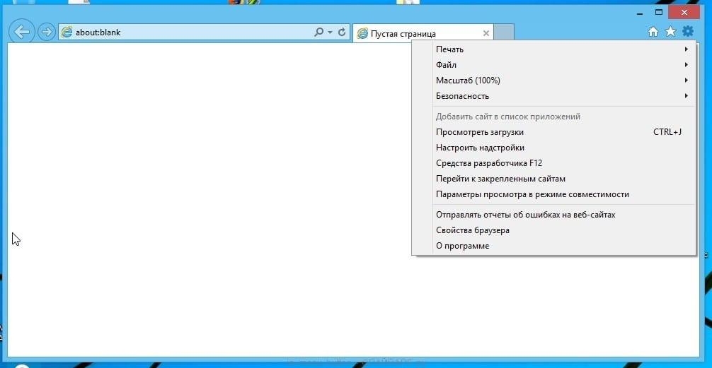 <Рис. 11 Настройки браузера>