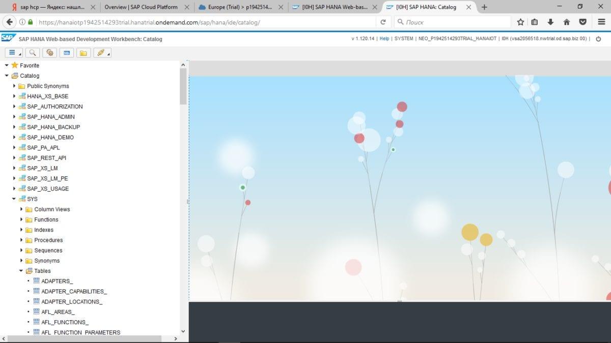 Рис.4. Интерфейс дополнения SAP HANA