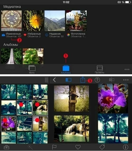 Рис.5 – Выбор снимков в iPhoto